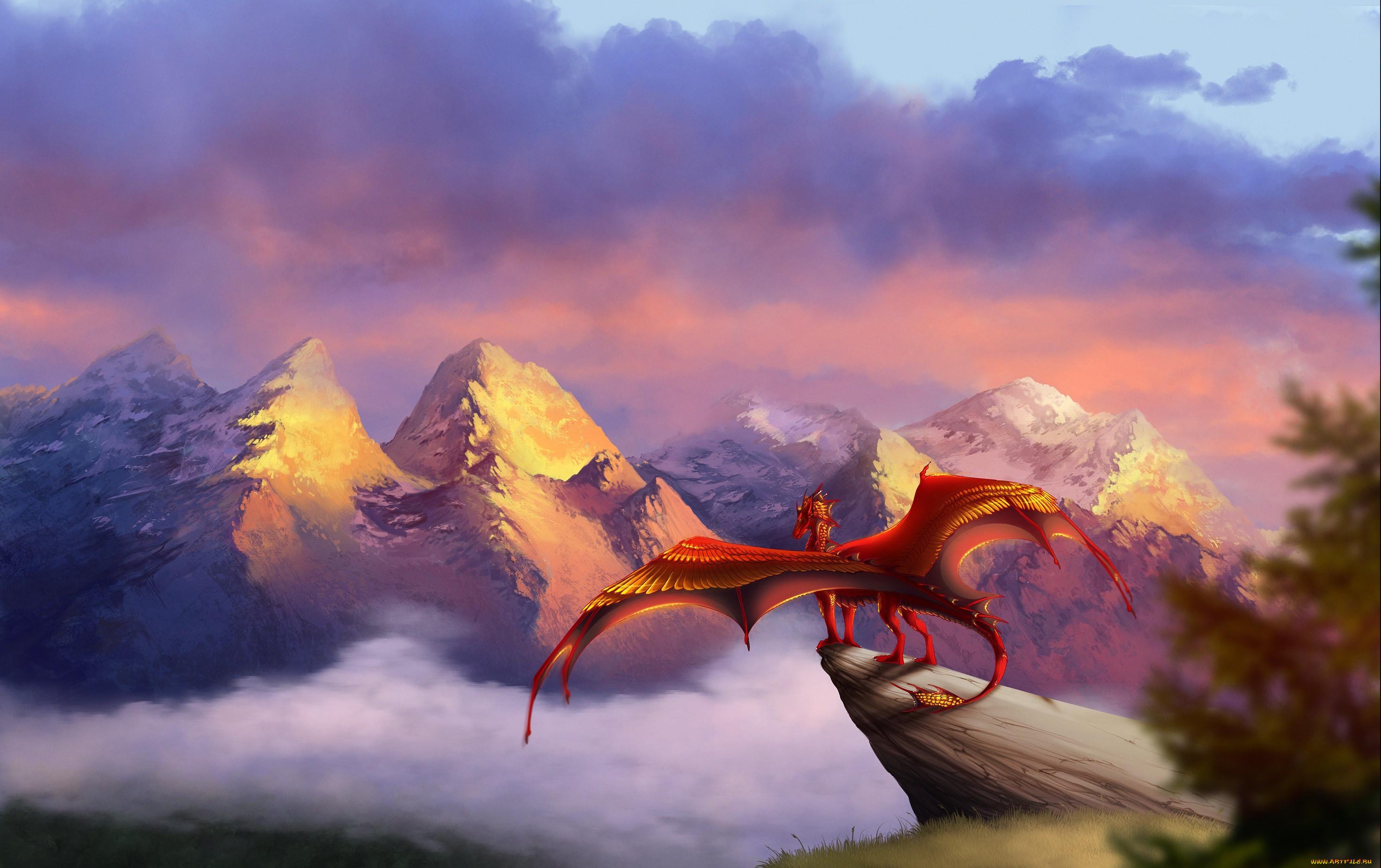 следующем ролике небо драконы картинки на рабочий стол представьте